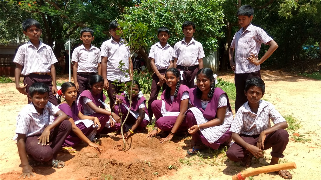 Tree Planting 7th Sep 2019